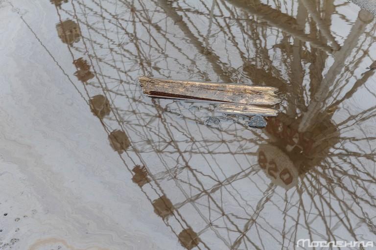Каким будет новое колесо обозрения на ВДНХ