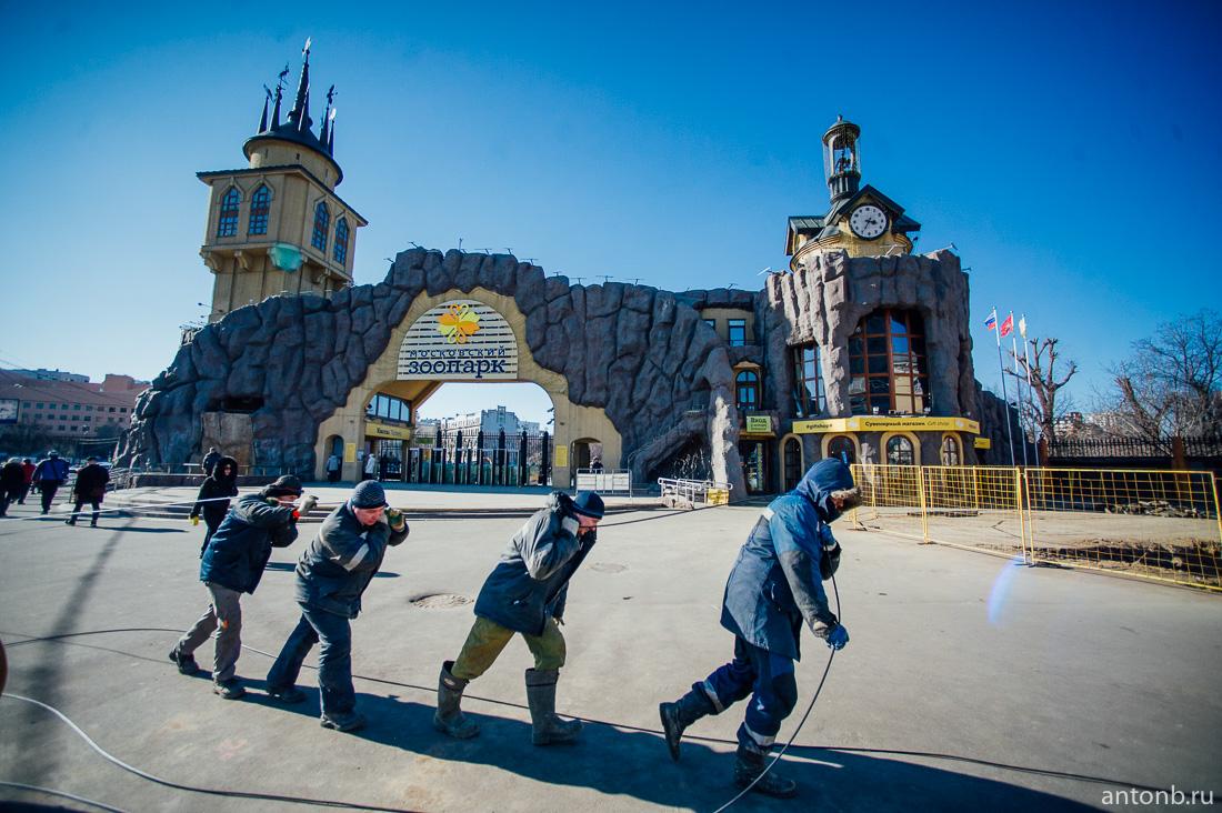 Что скрывает башня Московского зоопарка